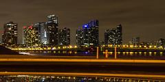 miami bright (bilderkombinat berlin) Tags: bridge usa reflection night florida 21 miami 2014