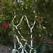 Trees_of_Loop_360_2014_129