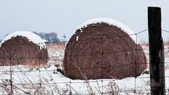 lumbering mammoth (_Matt_T_) Tags: winter ontario pentax niagara smcpda70mmf24limited k5iis singlechallenges
