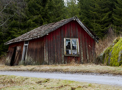 "Bad choice (Vidar ""the Viking"" Ringstad, Norway) Tags: road old trees winter red cold abandoned window nature grass norway canon eos norge wooden doors little country norwegen redhouse spooky rainy 7d shack veteran gravel østfold natureshot rygge naturepic råde"
