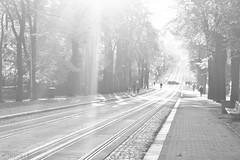Liberec | Czech Republic (C H) Tags: city sunset people blackandwhite sun white black town blackwhite republic czech crowd sunny blacknwhite citycenter bohemia citycentre sever republika crowdy liberec esko eskarepublika eska
