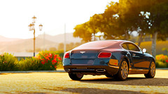 Angels (Myles Ramsey) Tags: 2 cars horizon continental forza gt bentley forzatography