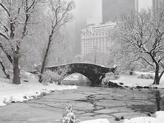 Gapstow Bridge and The Plaza (CVerwaal) Tags: plaza nyc winter snow newyork centralpark gapstowbridge thepond winterinnewyork olympusem5 lumixgvario1235mmf28