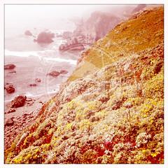 CALIFORNIA-159