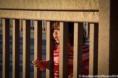 DSC_4515 (aceman42) Tags: beach stpetersburg florida beachlife clearwaterbeach sunshinestate pagadiancity saltlife sillimanuniversity zamboangadelsur saintcolumbancollege nikond7000 tiguma lovefl camdenworldgateway nissanmuranotravels