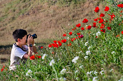 عکاسی؛ زمینه ای برای دوستی با طبیعت (Esmaeel Bagherian) Tags: canon sx1 بهار طبیعت شقایق عکاسی 1391 برزان گلهایوحشی bagherian باقریان