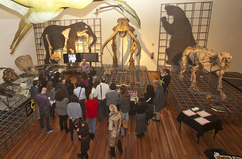 Comete el Museo - Dinosaurios
