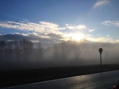 Mattino d'inverno (fiore56) Tags: panorama cloud fog alberi nuvole brina sole nebbia inverno