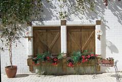 Turkey (Istanbul)- Window flowers of courtyard (ustung) Tags: flower window turkey nikon courtyard istanbul pots