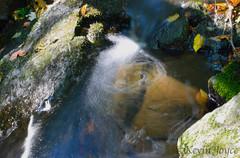 Gore Mountain Stream (kevdog2000) Tags: mountain lake ny color water leaves flow photography nikon stream long exposure kevin bright vibrant smooth adirondacks gore joyce
