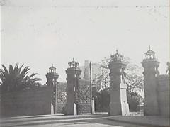 Sydney Botanic Garden - 1925 (Royal Australian Historical Society) Tags: nature garden sydney australian royal australia nsw historical botanic garden rahs royal society century 20th