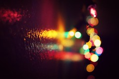 (Stephanie DiCarlo) Tags: color colors lights colorful glow christmaslights fairylights