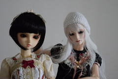 Tsuji and Nadeko - bunny () Tags: sd lolita bjd superdollfie volks sd10 megu sdg tsuji f01 dollmore leekeworld  vanillamousse zaoll nadeko  angelcherrycupcake anc2h