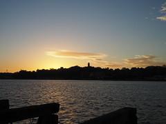 P5160114 (tartan_penguin) Tags: sydney pyrmont