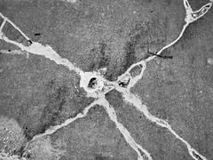 Sidewalk patterns (GJosephT) Tags: contrast lens pavement 28mm sidewalk seal fixed cracks ricoh grii