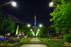 tokyo tower (three999) Tags: beautiful landscape tokyo cityscape nightscape sony tokyotower