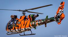 Gazelle (NTM 2016) (Ignacio Ferre) Tags: airplane nikon aircraft tiger zaragoza helicopter gazelle avin tigre nato helicptero otan tigermeet frenchairforce lezg arospatialesa342