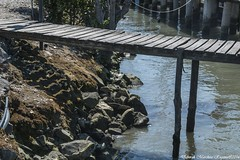 _MG_9926b (debby1261) Tags: sea mare pontile cantierenavale