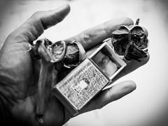 Les fleurs du mal (giovdim) Tags: giovdim giovis nightmare lesfleursdumal matchbox hand  baddreams fleetingflowers