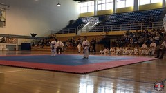 stefanou_15_5_2016_knockdown_3