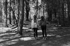 A walk in the woods (Kerryjwagner) Tags: trail dayhike swallowhollow