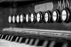 """Bourdon 8"""" (tomac_foto) Tags: white black tastatur register musik orgel klavier knpfe tasten einfarbig schwarzweis tasteninstrument klaviertastatur"""