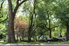 IMG_1439 (ShellyS) Tags: nyc newyorkcity manhattan parks unionsquare unionsquarepark