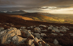 An evening in May on Moel y Ci (Nick Livesey Mountain Images) Tags:
