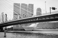 Harmony of the Seas (www.margosmit.com) Tags: blackandwhite canon blackwhite rotterdam harmony cruiseship maas kopvanzuid erasmusbrug cruiseterminal cruiseschip derotterdam canoneos100d harmonyoftheseas