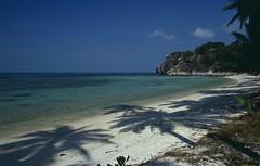 Koh Phangan, Leela Beach (blauepics) Tags: trees shadow sea white beach water strand landscape thailand island sand asia meer sdostasien wasser palm insel ko 1991 southeast koh landschaft leela schatten phangan kste weiser palmen coastscape