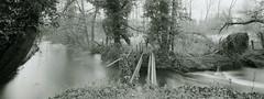 Once a bridge (carwyn2) Tags: bw river print landscape salisbury shen contact wiltshire ilford fp4 largeformat hao schneider pyrocat 4x10 angulon wylye 121mm lodima