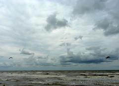mother's day 2016 on galveston island,   the gulf of mexico / beach 5-16 (nolehace) Tags: ocean sanfrancisco galveston water island spring day gulf wave mothers 2016 516 nolehace gulfofmecico fz1000