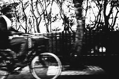 speed and trees (Ran Elmaliach) Tags: street people blackandwhite musician white black monochrome photography blackwhite gr performer ricoh ricohgr strret jendrix56 ranelmaliach