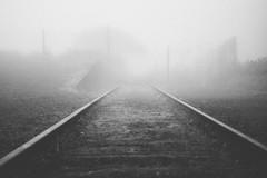 Train to Nowhere (_Moliveira) Tags: fog bw foggy haze trail train rail railroad