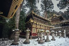 DSC_2205 (juor2) Tags:  nikko nikon d750 scene ruin travel traditional japan   tochigi snow lantern stone