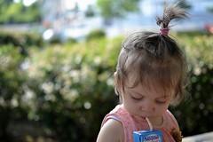 DSC_3520 (auroresb091) Tags: pink baby girl beautiful rose young rosa littlegirl bb