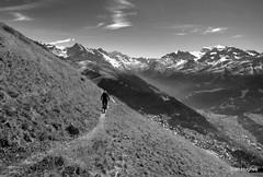 Autumn Riding around Verbier  (82) (Carl and Sian) Tags: orange alps switzerland mtb mountainbiking verbier singletrack orangefive bikeverbier alpinesingletrack carlandsian