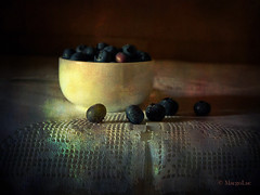 Blueberries ... (MargoLuc) Tags: blueberries mirtilli blue summer fruit soft light window stilllife vintage classic style painting july texture skeletalmess