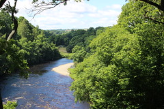 river tees (kokoschka's doll) Tags: river tees trees teesdale cotherstone pennines