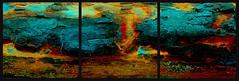 20160816 WoutvanMullem Drieluik Hout Etalage 2-2 (Wout van Mullem) Tags: kunst de etalage zuidhorn wout van mullem kleurrijk boomschors roest rust drieluik tryptich triptiek