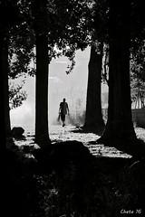 So lonely (photoschete.blogspot.com) Tags: canon 70d eos sigma avila navaluenga espaa castillayleon blanconegro blackwhite virado monocromo persona person arboles trees