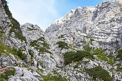 Tominkova pot, Triglavski narodni park, Slovenija / Tominek Route, Triglav National Park, Slovenia (Hrvoje aek) Tags: triglavskinarodnipark triglavskinacionalnipark triglavnationalpark narodnipark nacionalnipark nationalpark priroda nature planina triglav dreikopf montetricorno mountain planine mountains hribi stijena rock stijene rocks litica cliff litice cliffs hill planinar hiker planinari hikers planinarenje hiking julijskealpe julianalps alpigiulie alpe alps alpen alpi tominkovapot tominkovastaza tominkovput tominekroute staza put route path trail ferata viaferrata dolinavrata vratavalley panorama pejza landscape vidik pogled view ljeto summer sjevernastijenatriglava severnastenatriglava northfaceoftriglav sjevernastijena severnastena northface slovenija slovenia slowenien d3300 julischealpen