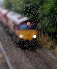66044 at Water Orton (robmcrorie) Tags: water orton warwickshire train rail railway station 66044 moreton lugg toton freight dbs class 66 spider web autumn