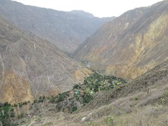 Colca Canyon-51