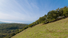 Trees on a Hillside (harminder dhesi photography) Tags: statepark park trees sky fall nature clouds canon landscape outdoors view hiking sonoma wideangle tokina bayarea hillside santarosa lightroom northbay 16x9 lr3 annadel 70d adoble californianorcal