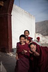 young monks 1 (nicelnicel) Tags: china boy boys young monk tibet monastery monks tibetan qinghai tongren