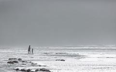 Into The Sea (John Westrock) Tags: ocean sea mist beach water fog oregon child mother foggy silhouettes foam pacificnorthwest canonef100400mmf4556lisusm canoneos5dmarkiii johnwestrock