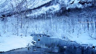 Nakkedalen - Troms Fylke (4)