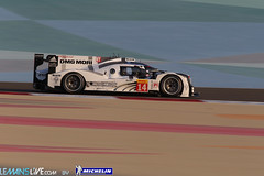 2014 WEC Barhain 6 Hours - Free practice (Le Mans Live Michelin) Tags: auto november bahrain novembre middleeast endurance fia motorsport sakhir wec championnatdumonde worldendurancechampionship