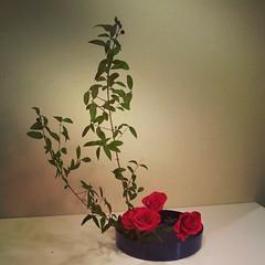 Mari's ikebana